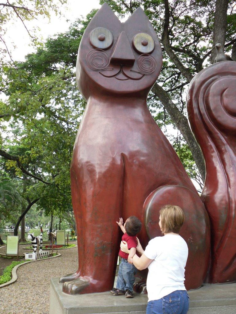 Cat Park